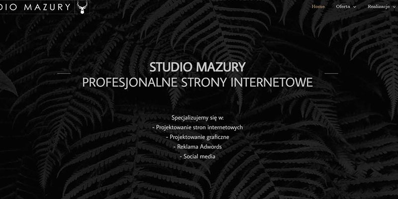 Studio Mazury - strony www
